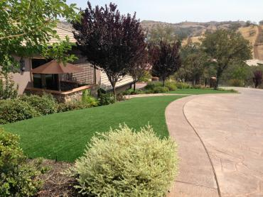 Artificial Grass Photos: Fake Pet Grass Wrightwood California Landscape, Lawns