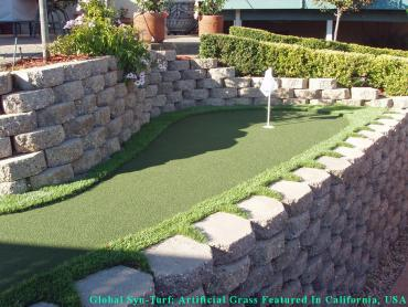 Fake Pet Turf Florence-Graham California Landscape artificial grass