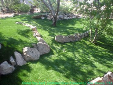 Artificial Pet Turf Commerce California Lawns artificial grass