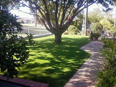 Artificial Grass Photos: Artificial Pet Turf Carlsbad California Lawns
