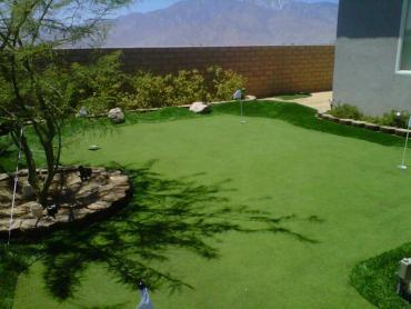 Artificial Grass Photos: Synthetic Pet Turf Mettler California Back and Front Yard