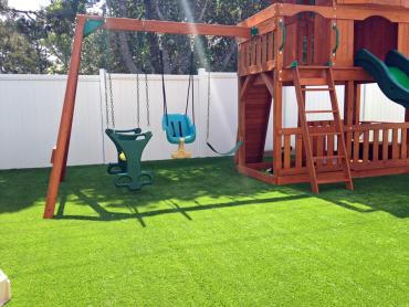 Artificial Grass Photos: Synthetic Pet Turf Aguanga California Lawns