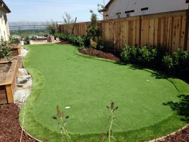 Artificial Grass Photos: Golf Putting Greens Sherman Oaks California Synthetic Turf