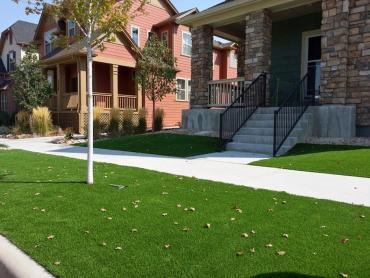 Synthetic Pet Turf Inglewood California Landscape, Lawns artificial grass