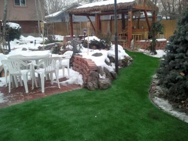 Synthetic Pet Turf Lennox California Landscape artificial grass
