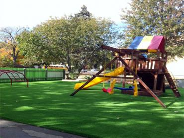 Synthetic Pet Turf West Rancho Dominguez California Landscape artificial grass