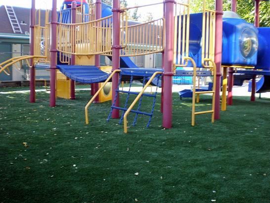 Artificial Grass Photos: Fake Grass Ladera Heights California  Kids Safe  Landscape
