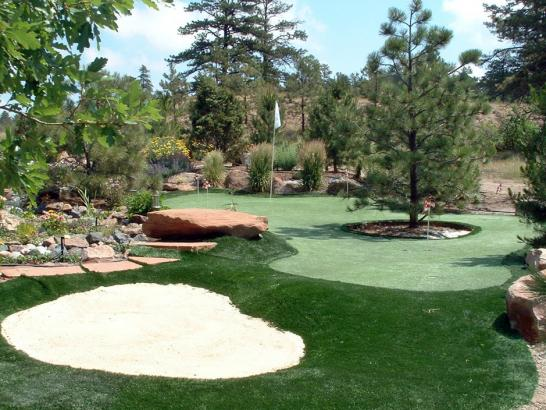 Golf Putting Greens Anaheim California Synthetic Grass  Backyard artificial grass