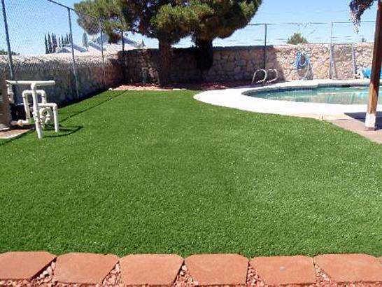 Artificial Grass Photos: Synthetic Pet Grass Lennox California for Dogs  Swimming