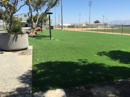 Artificial Grass Photos: Grass Installation Yucca Valley, California