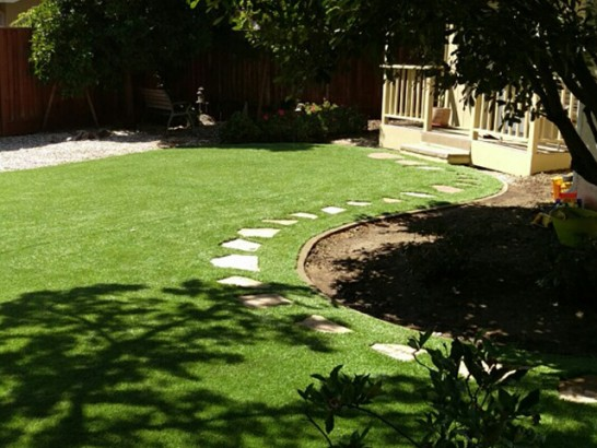 Artificial Grass Photos: Turf Grass La Quinta, California Garden Ideas, Backyard Design