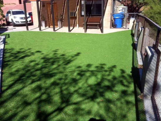Artificial Grass Photos: Fake Turf Lake Elsinore California  Landscape  Backyard