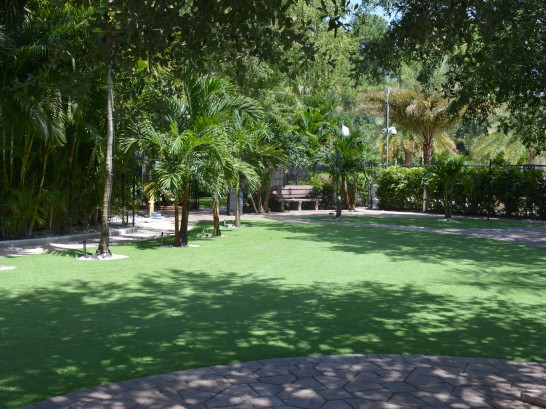 Artificial Grass Photos: Grass Turf Taft, California